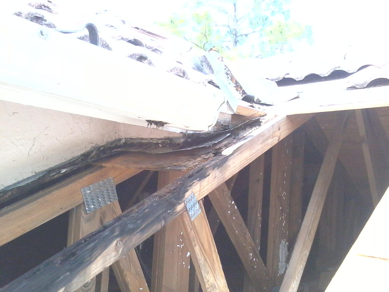 41 KWitter Repairing Roof